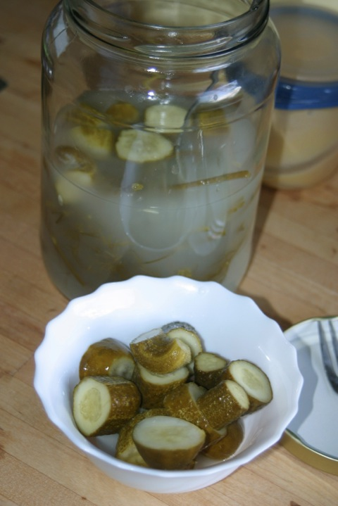 bittere gurken giftig