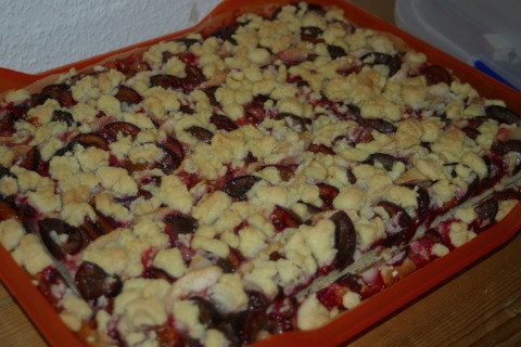 Pflaumenkuchen 9 Rezepte 97 Backen 972 Backen Suss 9722 Kuchen